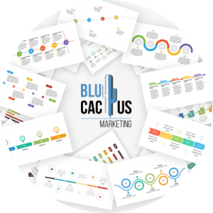 BluCactus-Prñsentation-planen
