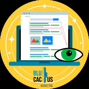 BluCactus-Warum-ist-SEO-so-wichtig-fr-meine-Webseite-1-Multiplizieren-Sie-Ihre-Sichtbarkeit.
