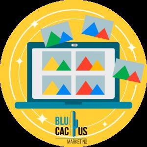 BluCactus-bilder-optimieren.