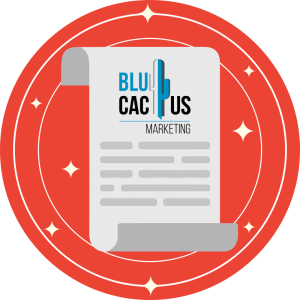 BluCactus - fazit