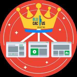 BluCactus-Erstellen-Sie-qualitativ-hochwertige-Inhalte