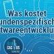 BluCactus-Wie-viel-kostet-Custom-Software-Development-Cost-Cover-Page