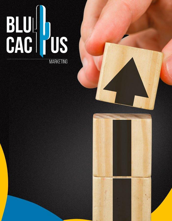 BluCactus - Datengesteuerte Social-Media-Marketingkampagnen