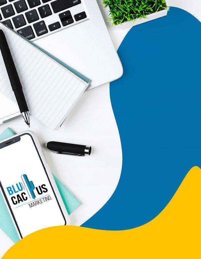 BluCactus - Ein ansprechender erster Eindruck, der Schlüssel zum Erfolg von Social Media-Werbung