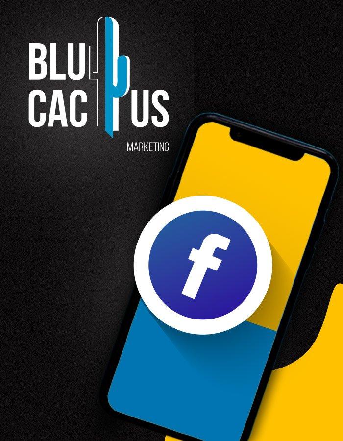 BluCactus - Facebook-Marketing Agentur