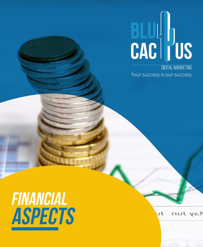 BluCactus - Finanzielle Aspekte