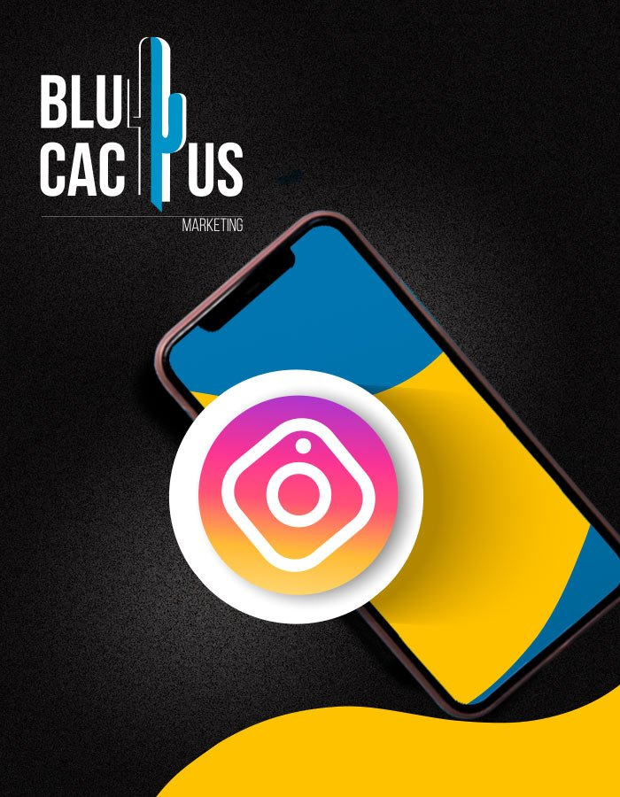 BluCactus - Instagram Marketing Agentur