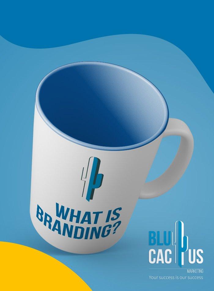 BluCactus - Markenidentität entwickeln