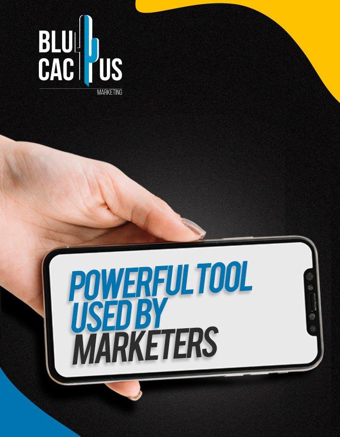 BluCactus - Social Media Management