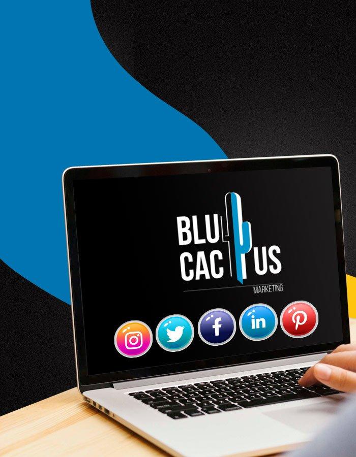 BluCactus - Social Media Marketing Leistungen