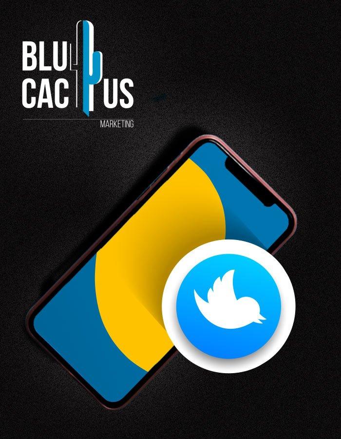 BluCactus - Twitter Marketing Agentur