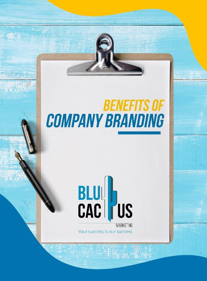 BluCactus - Vorteile von identitätsbasierter Markenführung