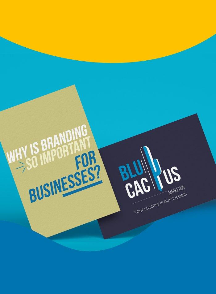 BluCactus - Warum ist Branding für Unternehmen so wichtig