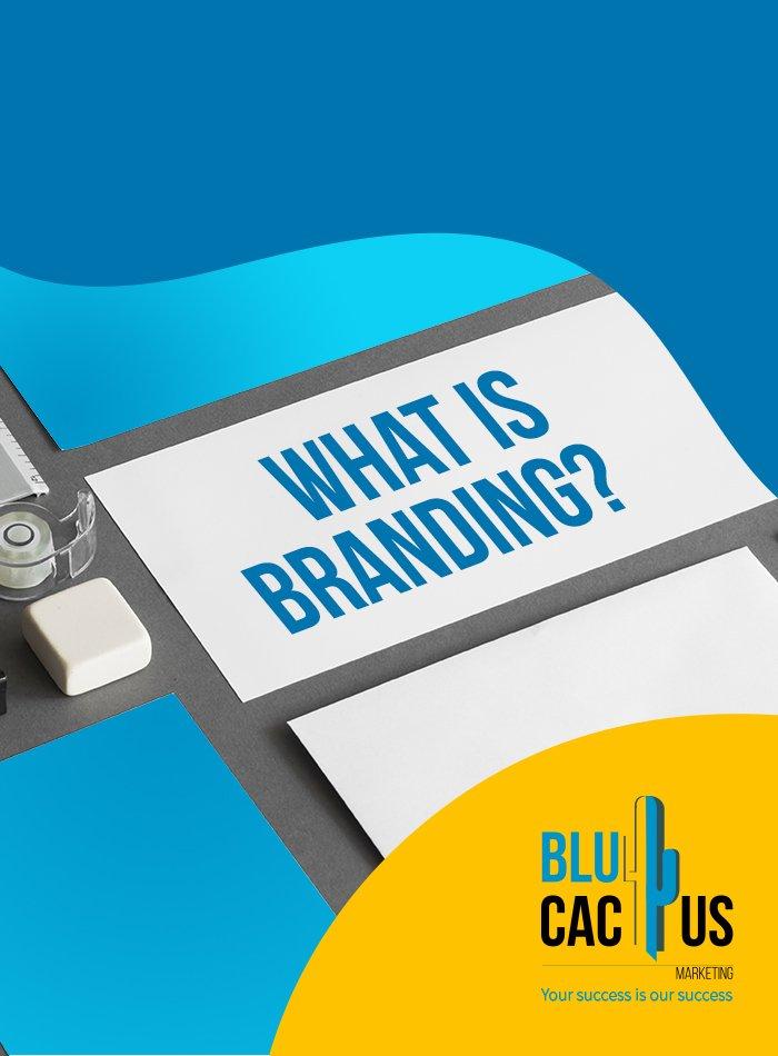 BluCactus - Was ist Markenführung?