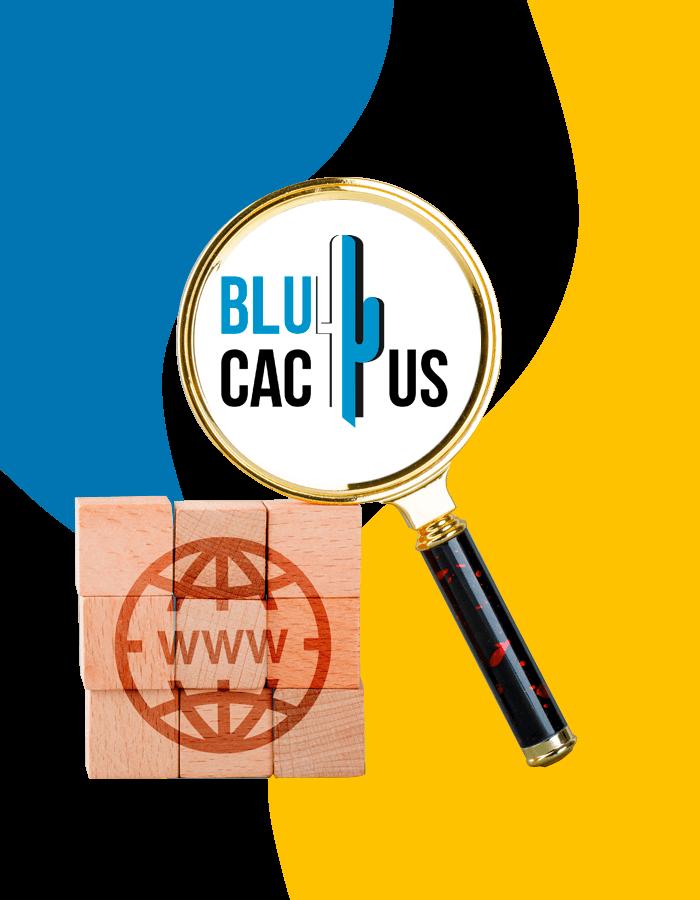 BluCactus - Die beste Werbeagentur fuer Suchmaschinenoptimierung