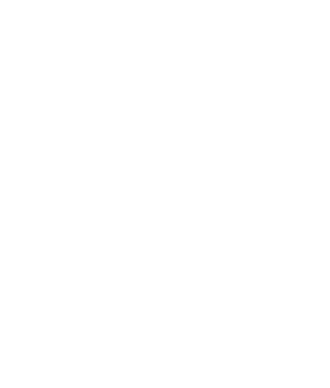 BluCactus Logo Ihr Erfolg ist unser Erfolg