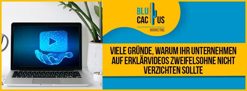 BluCactus - Erklärvideos - banner